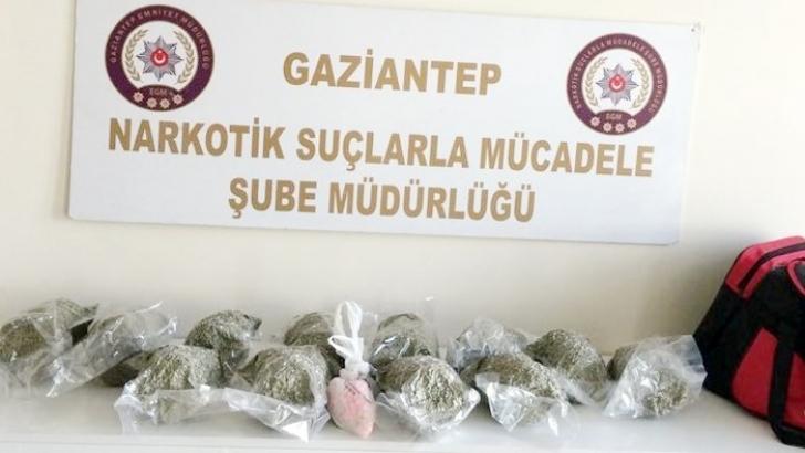 6 kilo 250 gram bonzai ele geçirildi