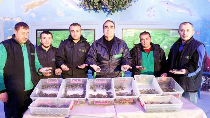 3 bin 400 su kaplumbağası Gaziantep'e getirildi