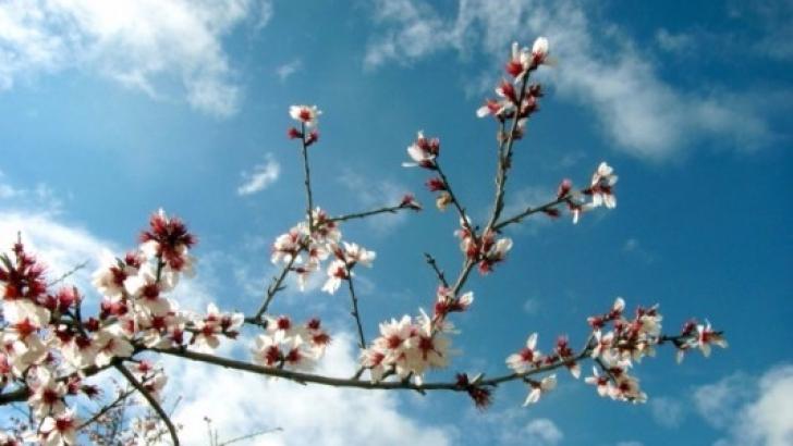 Baharın müjdecisi 'cemre' havaya düştü