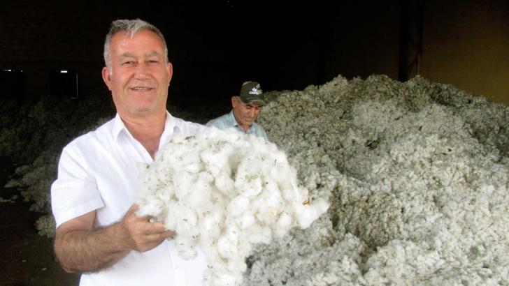 Pamuk fiyatı üreticilerin yüzünü güldürdü